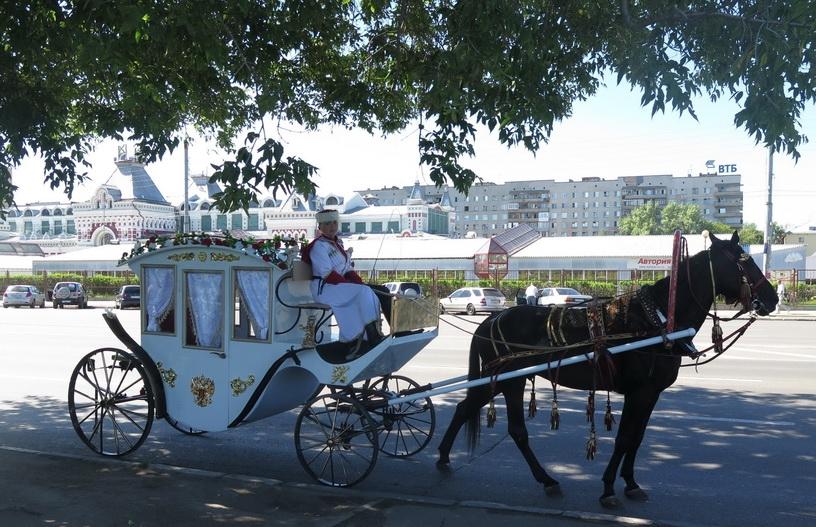 Карета фаэтон для лошадей