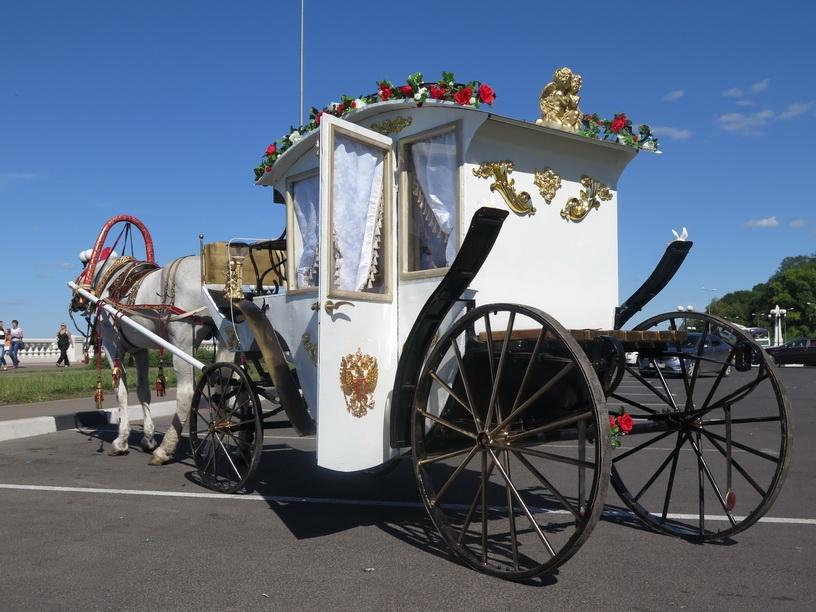 Свадьба на много лошади