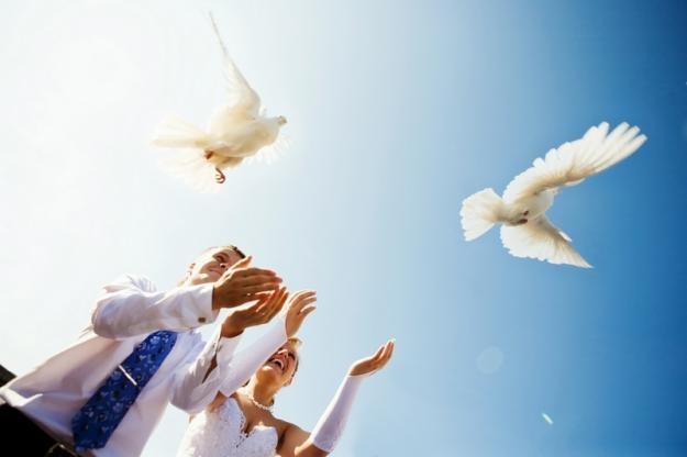 Свадебные платья Нижний—Новгород