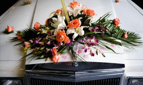 Свадебный авто какой лучьше