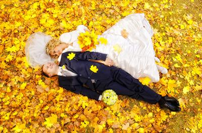 Теплые осенние свадьби палантины