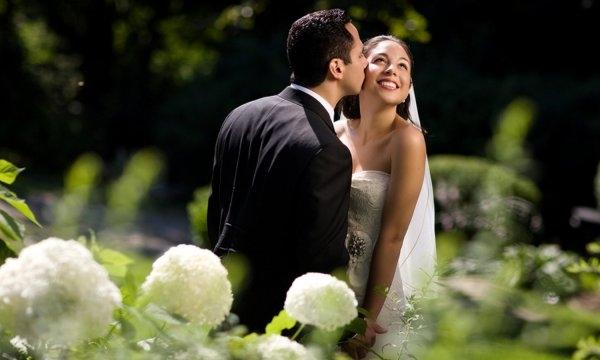 Образ свадьбы в августе