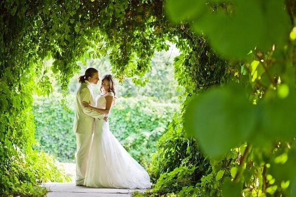 Свадьба природа