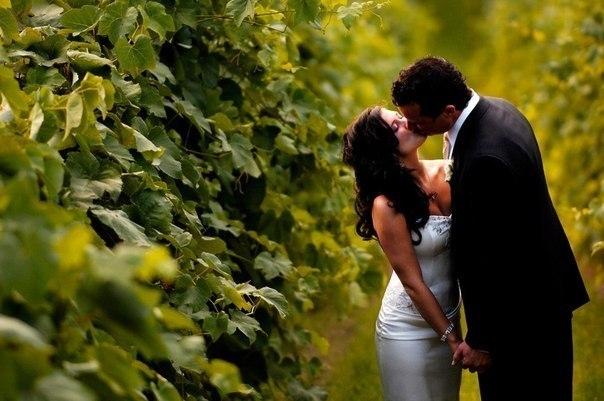 Цвет наряда на годовщину свадьбы