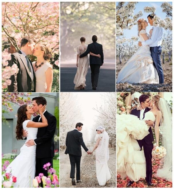 Яблони в цвету свадьба
