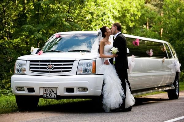 Выбор ведущего на свадьбу