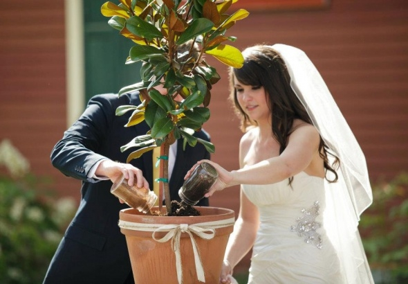 слова знакомства ведущего на свадьбе