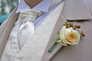 Свадебные галстуки для жениха фото