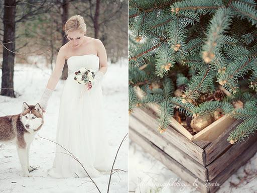 Образ для зимней фотосессии в лесу