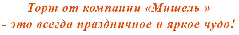 Торт Мишель на заказ Нижний—Новгород