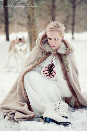 Образы зимних фото в лесу