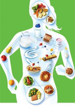 список правильного питания для похудения