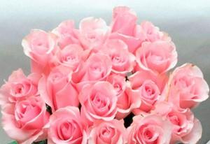 Что подарить на розовою свадьбу?