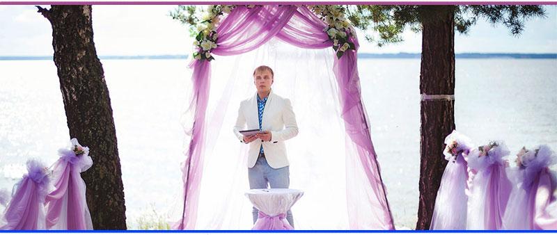 Владимир Путихин ведущий на свадьбу