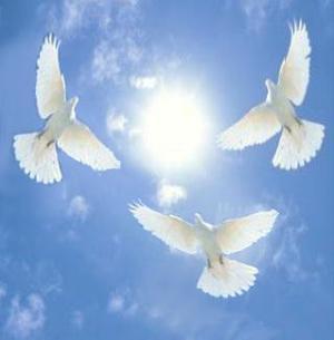 Картинки свадебные голуби